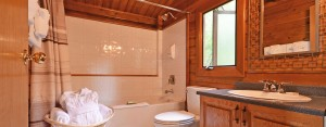 point no point resort cabins B & E bathroom